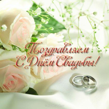 Поздравление со свадьбой однокурснице