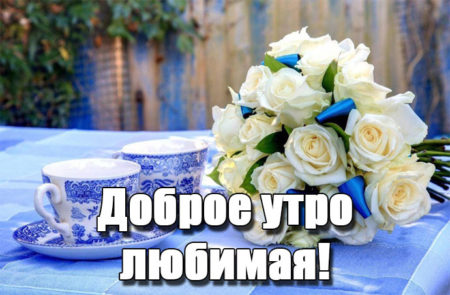 Художника манилова, доброе утро любимой девушке в картинках прикольные