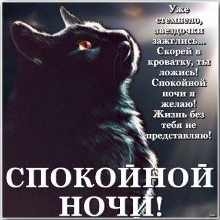 Волк надписью, спокойной ночи ксюша картинки приколы