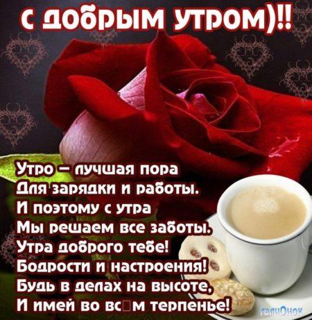 Картинки с пожеланием доброго утра любимой женщине, днем