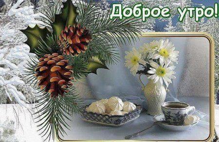 Картинка с надписями доброе утро зима понедельник, открытка днем защитника