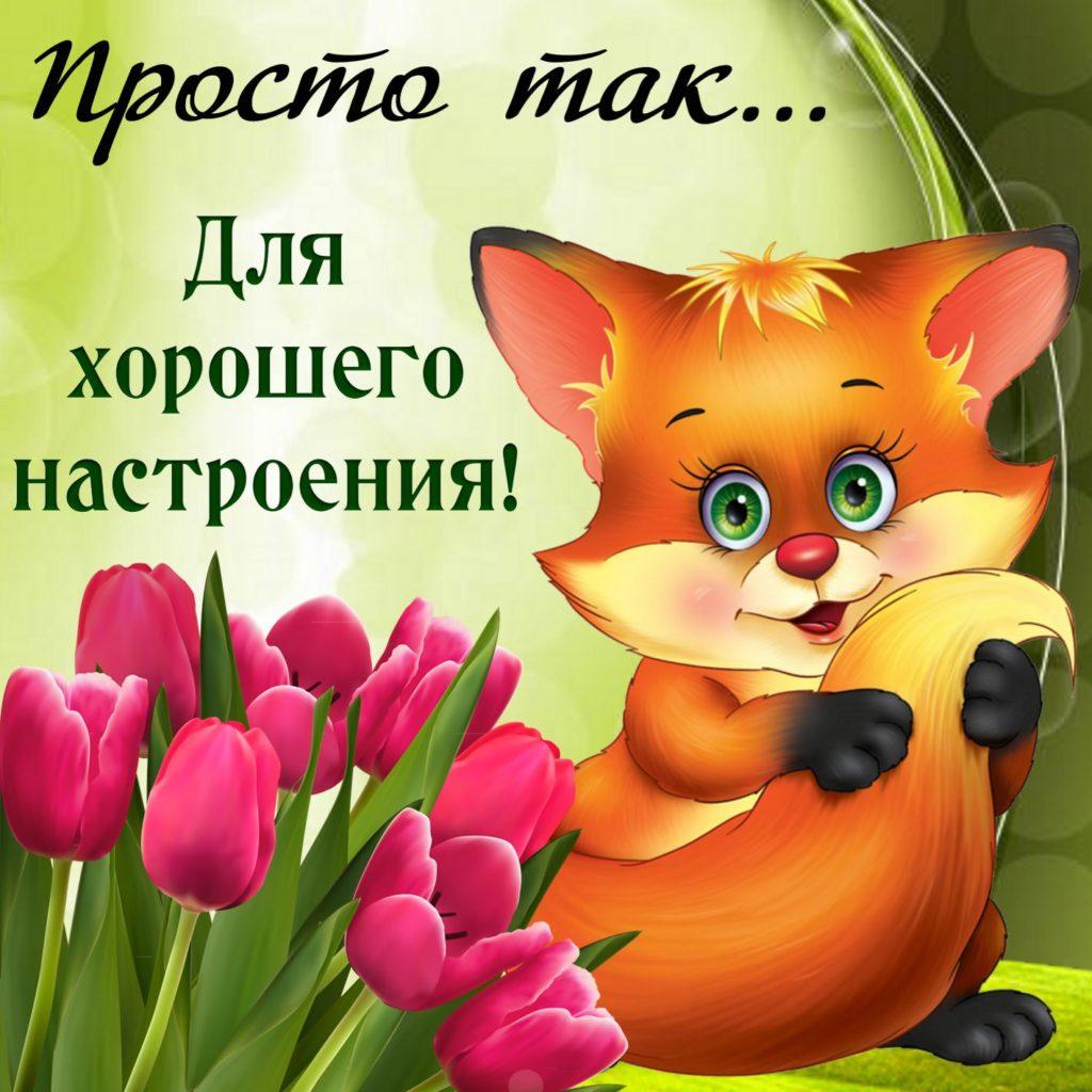 Картинки о прекрасном настроении и хорошем завершение дня, москва
