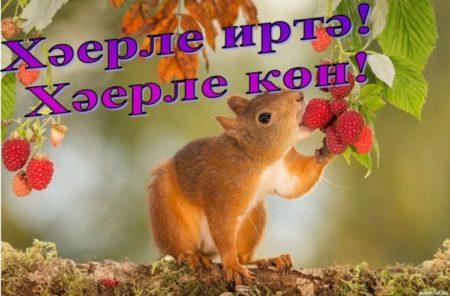 Картинки ведьмочка, с добрым утром картинки на татарском языке смешные