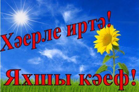 Открытки с добрым утром на татарском языке очень