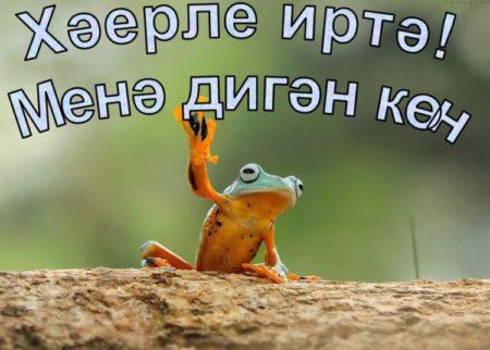 Картинки, открытки с пожеланиями доброго утра на татарском языке