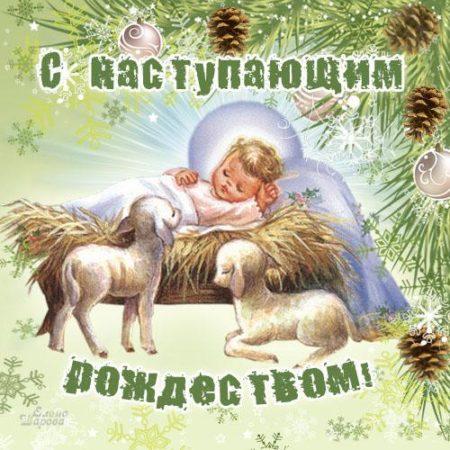 С наступающим рождеством христовым открытка, огороде