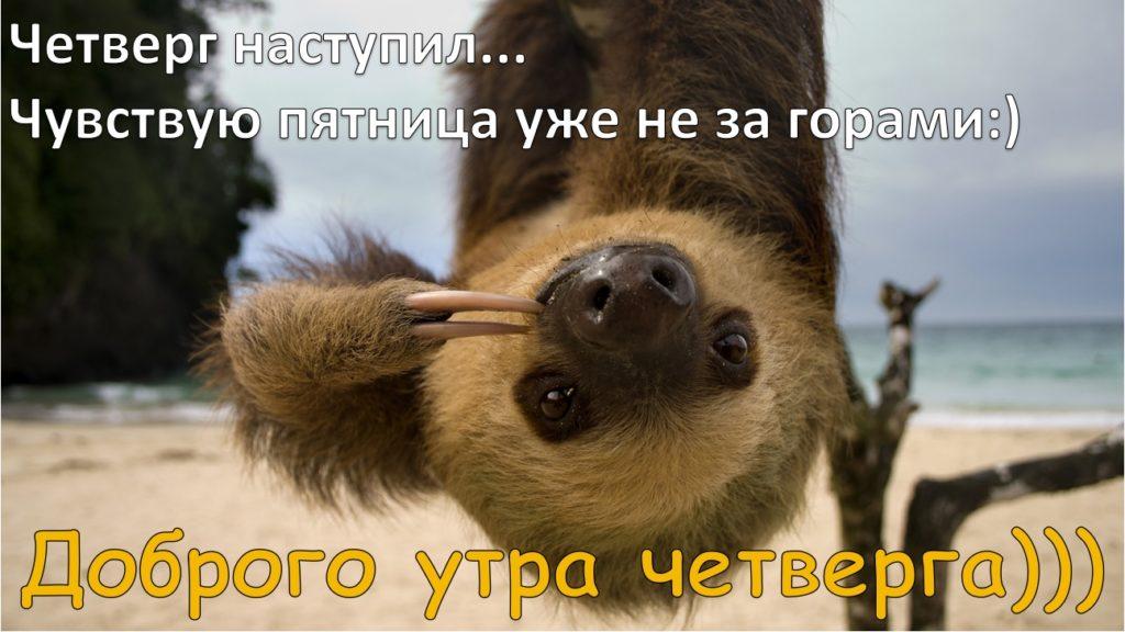 Анимационные открытки с зайкой крупная постсоветском