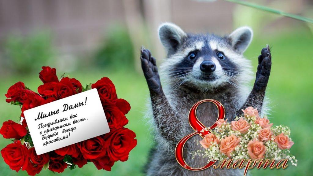 Открытка с 8 марта фото с приколом, открывающаяся открытка