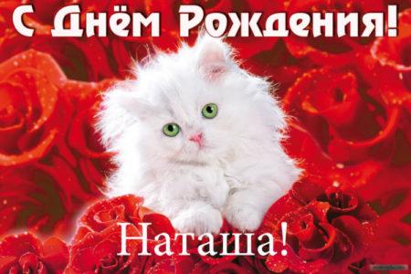 otkritka-pozdravlenie-natasha foto 11
