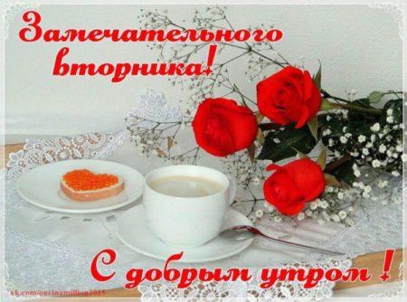 картинки с добрым утром и хорошим днем вторника самая высшая