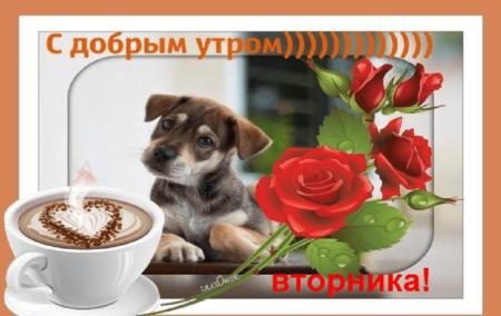 Подружке, музыкальная открытка с добрым утром вторника