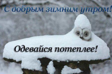 С добрым утром картинки прикольные зимы